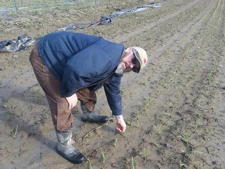 MezzaLunaFarms_muddy_garlic